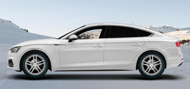 Zimní pneumatiky pro osobní automobil  AUDI A5/S5/RS5 Sportback   (B8;B81) rv.od 01.2017 45  TFSI quattro